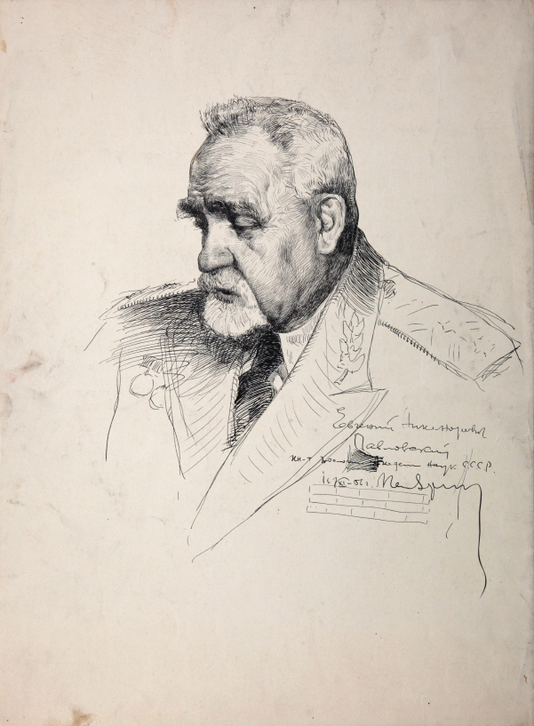 E. N. Pavlovski, 1956, Ink, pen on paper, 51.5×38cm