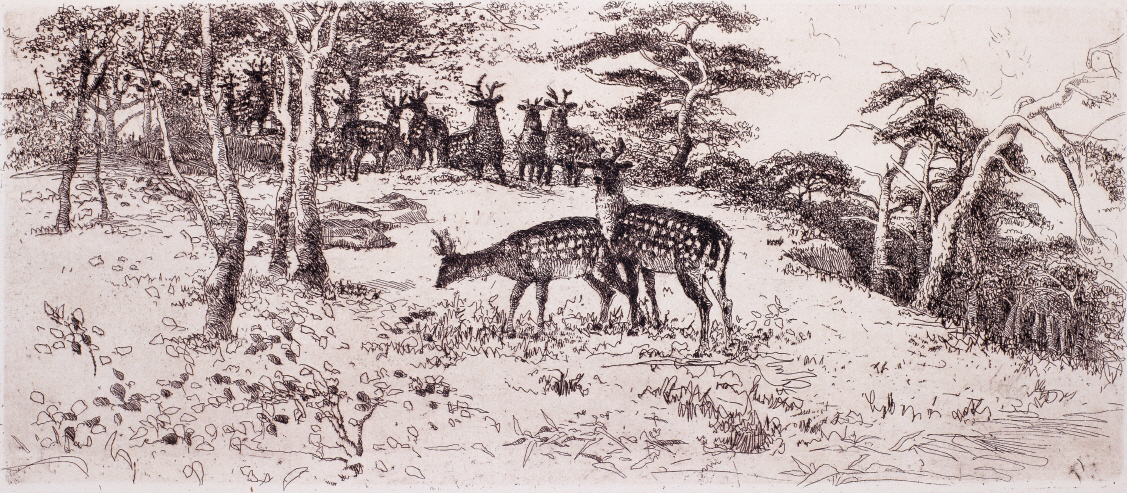 Artyom National Animal Farm, Deers, 1981, Etching, 21.2×49cm