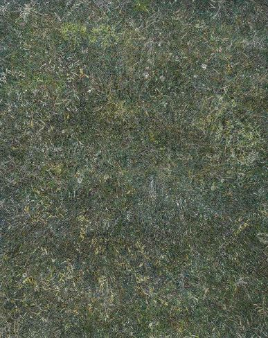 Grass01, 2016, Oil on canvas, 227x182cm