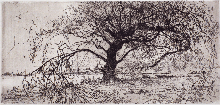 Waterside (Willow), 1970, Etching, 14×29.3cm