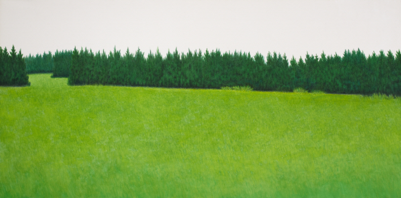 Towards, 2011, Color on fabric, 150x300cm