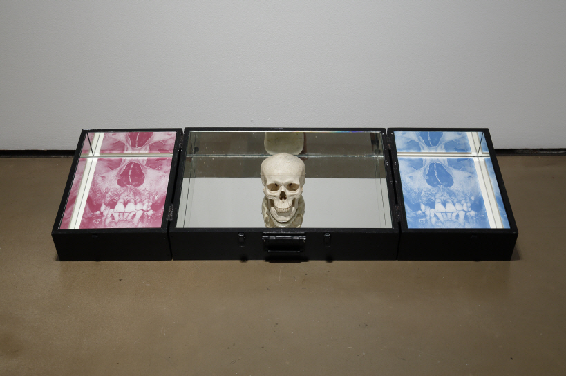 The Bag of '□', 2010-2014, Silkscreen on ceramic panel, articial skull, wooden box, 46x131x12cm