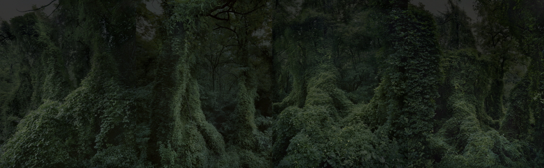 THE VALLEY OF DARKNESS, 2016, Digital C-print, 225x720cm