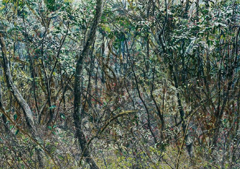Forest06, 2015, Oil on canvas, 182x259cm
