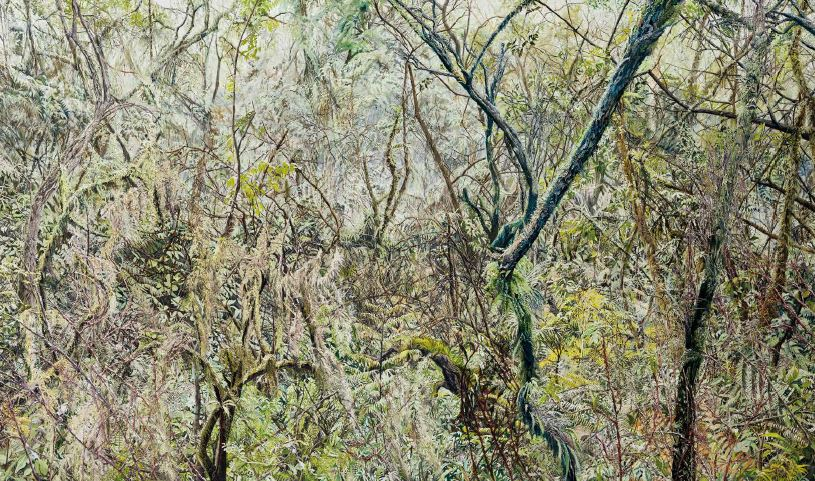 Forest02, 2015, Oil on canvas, 197x333cm