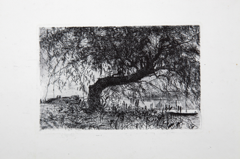 Waterside Willow, 1988, Etching, 17.5×26.8cm