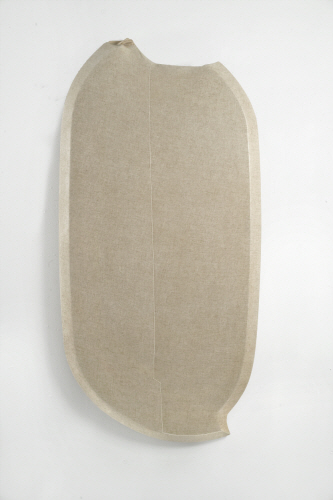 Choong Sup, LIM Ssal- Dichotomy 2009 Canvas, rabbit skin glue, U.V.L.S gel 30x58x3 inch