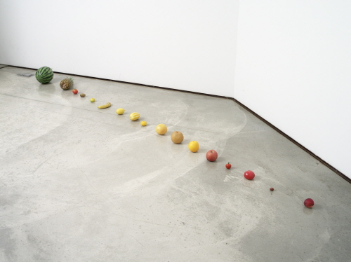 Lu ZhengYuan Control  2009  Fresh vegetables, Variable size