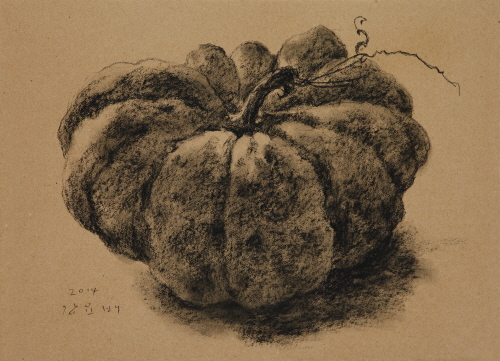 Pumpkin, 2014, Conte on paper, 39x54cm