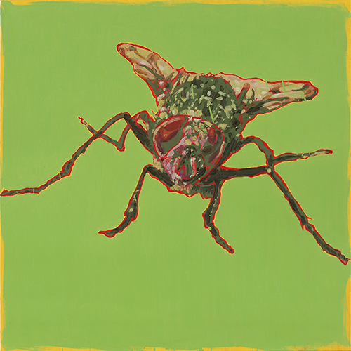 Eradication of Four Pests - Fly, 2014, Oil on canvas, 100x100cm