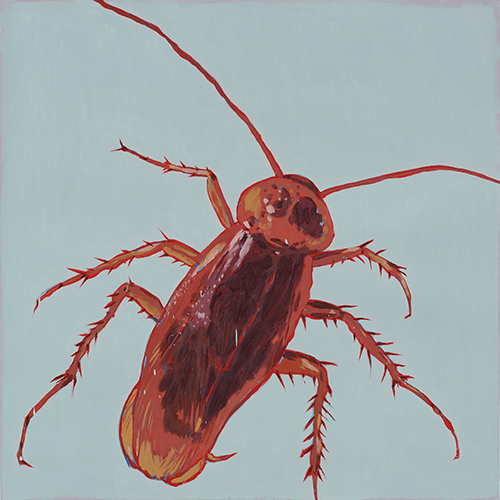 Eradication of Four Pests - Cockroach, 2014, Oil on canvas, 100x100cm
